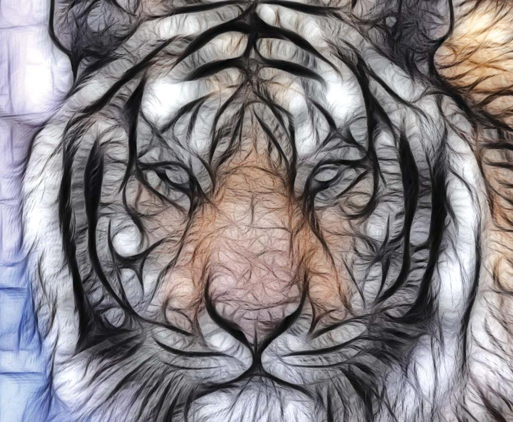 Nature How the tiger got its stripes? Dr. T.V.